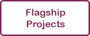 Flagship Projects link
